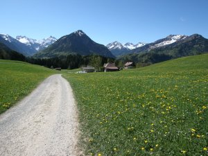 Wanderweg Kühberg