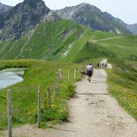 Natur- und Blumenpfad am Fellhorn
