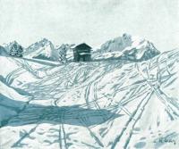 Maximilian Schels - Dummelsmoos 1920
