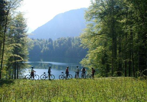 Fahrradtour zum Freibergsee