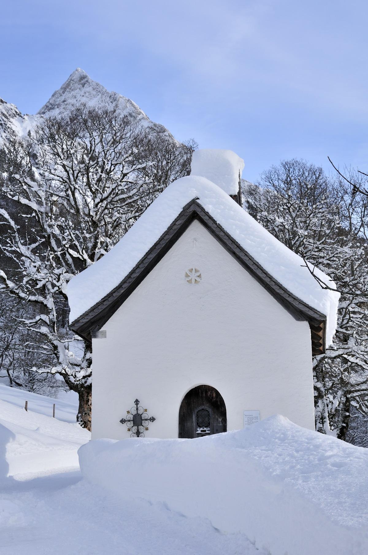 Nett Vogeltränke Im Winter Zeitgenössisch - Heimat Ideen ...