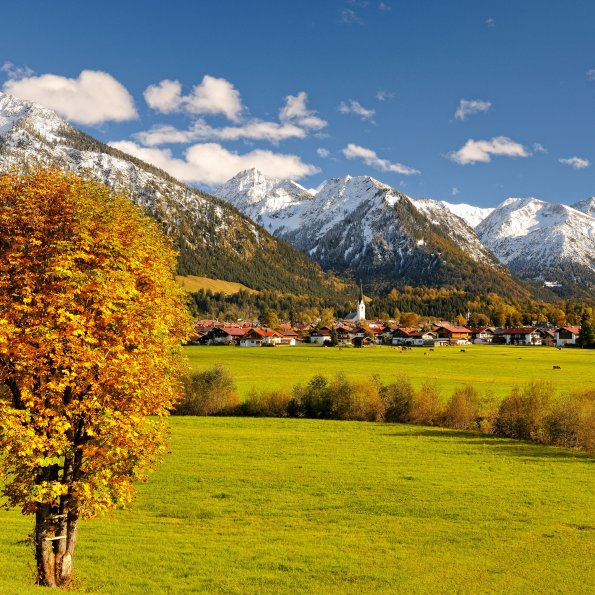 Herbst Panorama