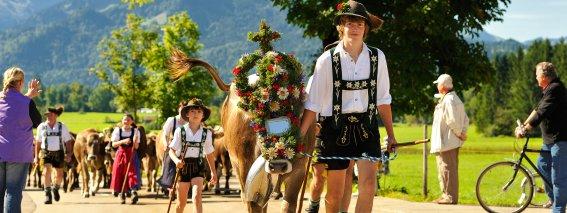 Viehscheid Schöllang Tourismus Oberstdorf (3)