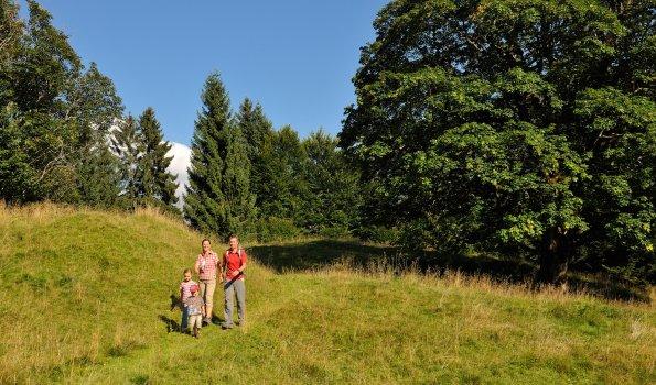 Familienwandern Hochleite Tourismus Oberstdorf (3)