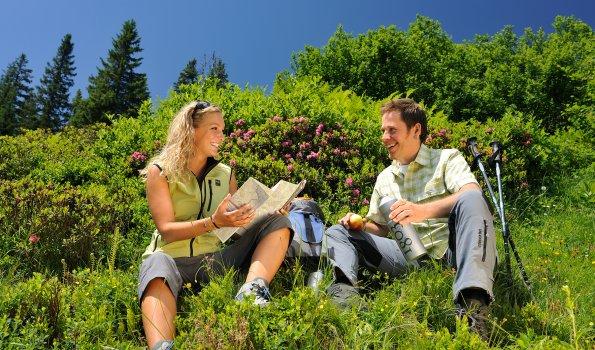 Fellhorn Alpenrosenblüte quer Tourismus Oberstdorf