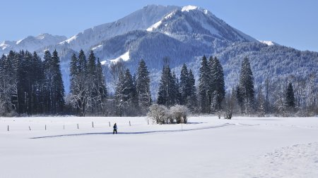 Langläuferin Tourismus Oberstdorf