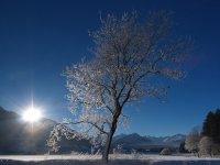 Rubi Winter Tourismus Oberstdorf