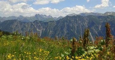 Ausblick am Fellhorn