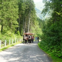 Kutschfahrt ins Oytal
