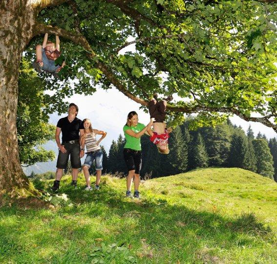Familienwandern am Söllereck