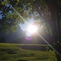 Sonnenaufgang Golfplatz