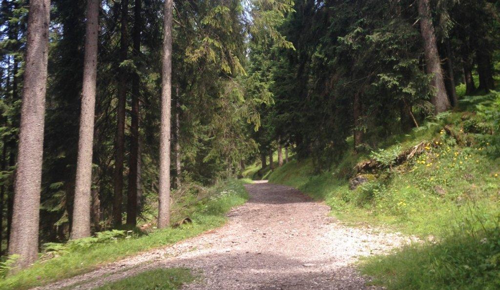 Wallrafweg