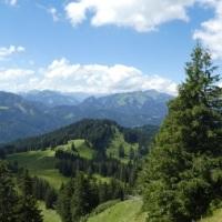 Panorama vom Piesenkopf