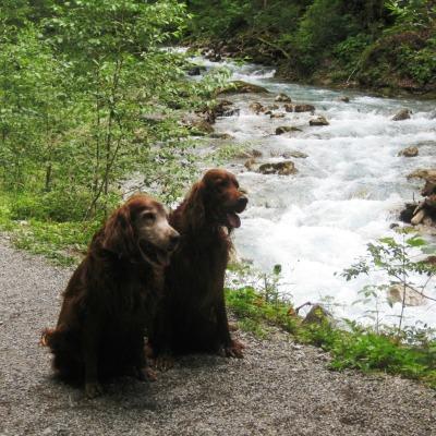 Yuka und Ashanti am Oybach