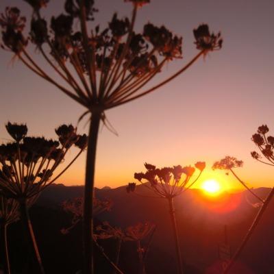 Sonnenuntergang Fellhorn