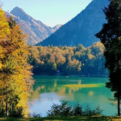 Herbstlicher Freibergsee
