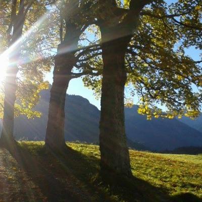 Herbstsonne an der Hofmannsruh