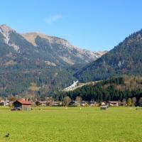 Herbstliche Öschwiesen (3)