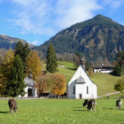 Herbstliche Öschwiesen (4)