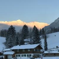 Blick auf das Nebelhorn