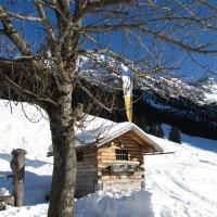 Winterwanderung zur Gaisalpe (3)