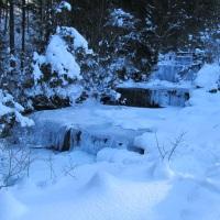 Winterwanderung zur Gaisalpe (6)