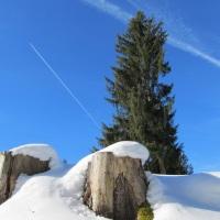 Winterwanderung zur Gaisalpe (7)