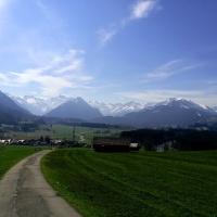 Frühling am Bergöschweg