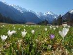 Frühling im Stillachtal
