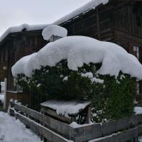 Neuschnee im April (1)