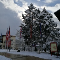 Neuschnee im April (6)