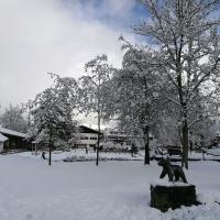 Neuschnee im April (7)