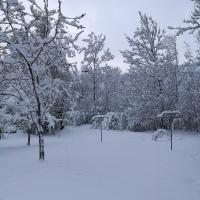 Neuschnee im April (10)