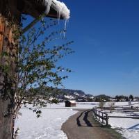 Winterspaziergang im April (27)