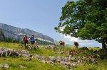 Mountainbiketour im Rohrmoos