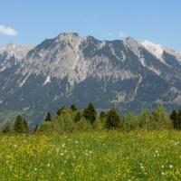 Kornau mit Blick in die Berge