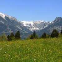 Kornau mit Blick zum Nebelhorn