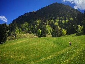 Trailrunner richtung Gerstruben
