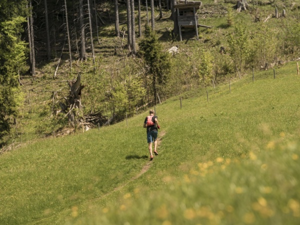 Trailrunning (5)