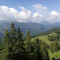 Bergtour auf den Piesenkopf (13)