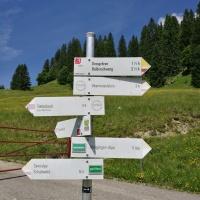 Bergtour auf den Piesenkopf (8)