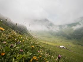 Blick zur Alpe Dietersbach