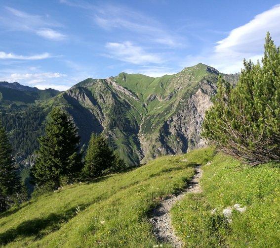 Weg zwischen Lugenalpe & Hahnenköpfle