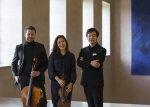 Trio Gaon