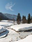 Rohrmoos im Winter