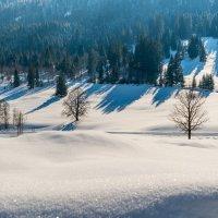 Winterlandschaft Oberstdorf