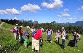 Geologisch-botanische Wanderung heutzutage
