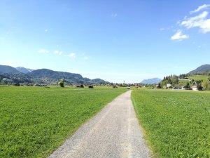 Spazierweg in den Öschwiesen
