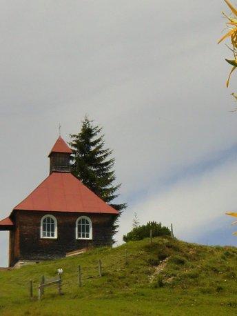 Gelber Enzian an der Kapelle der Piesenalpe