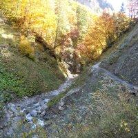 Weg ins Traufbachtal